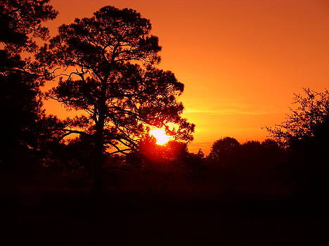Red Sky in the Morning by Ramona Barnhill