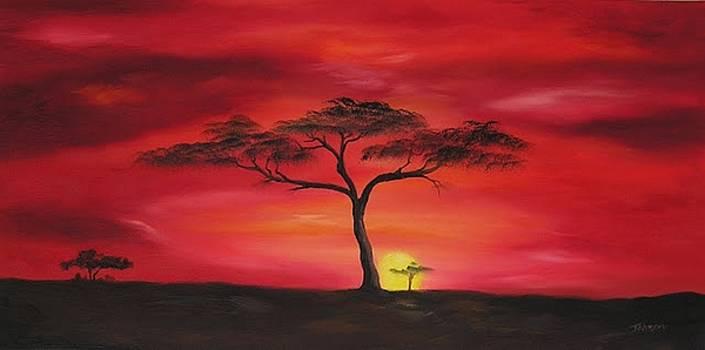 Red Sky by John Johnson