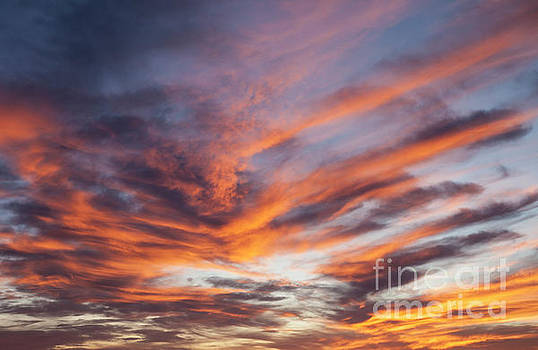 Red Sky by Timothy Johnson