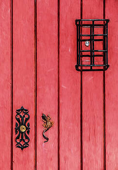 David Letts - Red Speakeasy Door