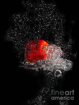 Red Splash by Barbara Dudzinska