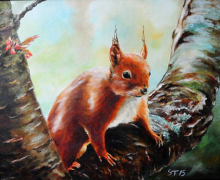 Red Squirrel by Steve James