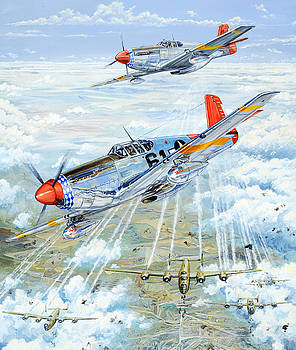Red Tail 61 by Charles Taylor
