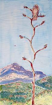 Red Tail, Salero Ranch by Virginia Vovchuk