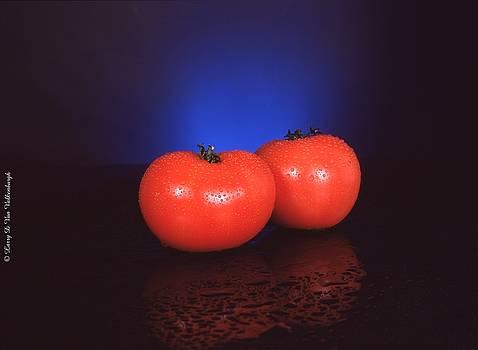 Red Tomatoes by Larry Van Valkenburgh