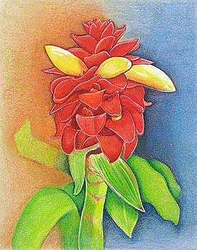 Red Tower Ginger Plant by Barbara Goodsitt