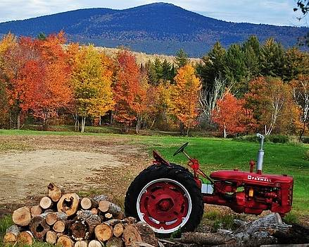 Red Tractor with fall colors by Pamela Keene