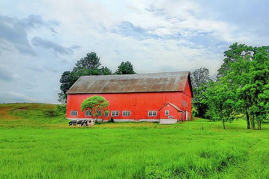Red Vermont Barn by Brian Pflanz