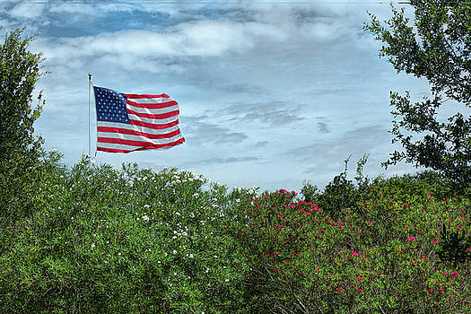Red, White and Blue by John M Bailey