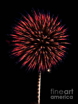 Red With Sparkles by Lisa Holmgreen