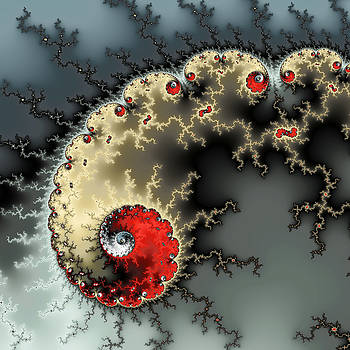 Red yellow grey and black - amazing mandelbrot fractal by Matthias Hauser
