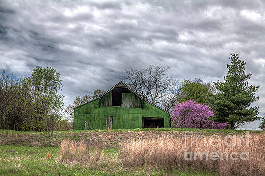 Larry Braun - Redbud by a Green Barn