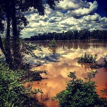 Redneck Riviera. Brazos River In Snook by Christi Vest