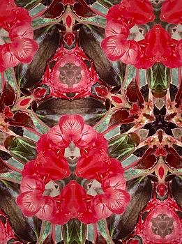 Reds of Nature by Sylvan Adams