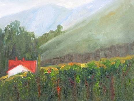 Redtop Vineyard by Thomas Phinnessee