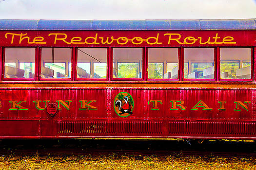 Redwood Route Coach Car by Garry Gay