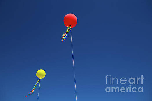 Red,yellow Balloon Blowing By The Wind In The Air With The Blue  by Jingjits Photography
