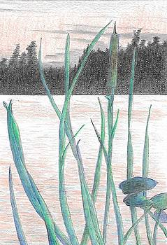 Reeds and Island by Jim Edwards