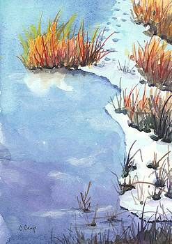 Reeds Frozen in Time by Christine Camp