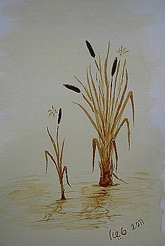 Reeds by Maina  Kabiru
