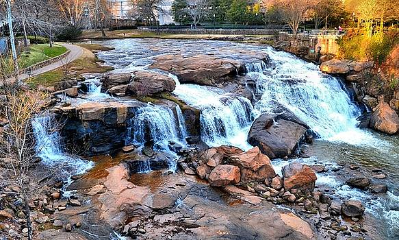 Reedy River Falls by James Potts
