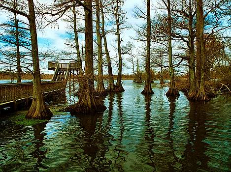 Julie Dant - Reelfoot Beauty