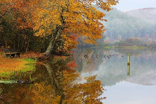 Refections of Autumn by Tim Ford
