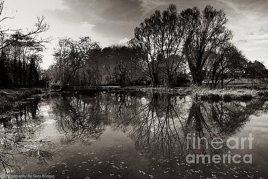 Reflect  by Gary Bridger