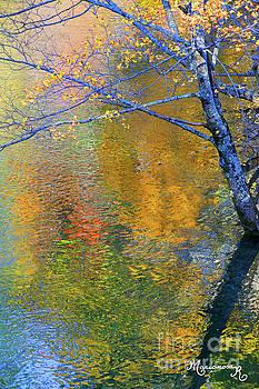 Reflecting Autumn by Mariarosa Rockefeller