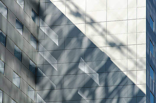 Reflecting On Shadows by Emily Bristor