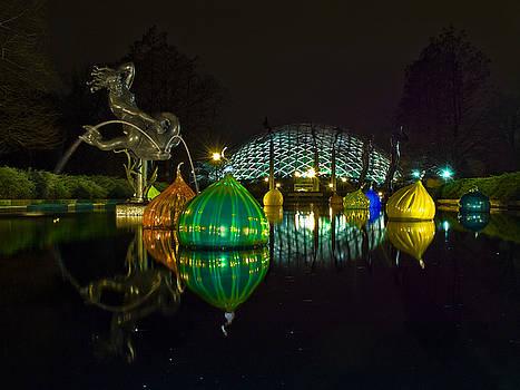 Tim Mulina - Reflecting Pool at Night