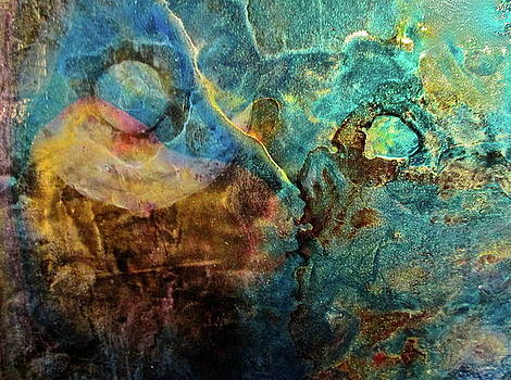 Reflecting the Earth by Janice Nabors Raiteri