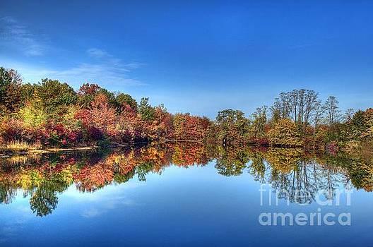 Reflection by Arnie Goldstein