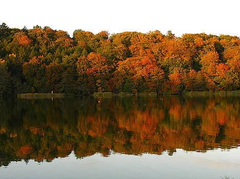 Reflection. Autumn Colours by Cristina Rettegi