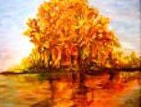 Reflection by Clara  Bierman