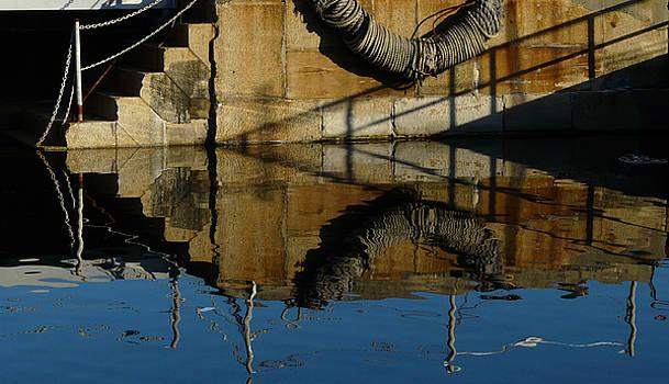 Reflection by Elizabeth McPhee