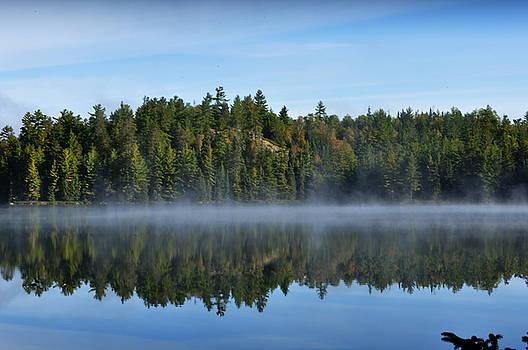 Reflection  by Erin Clausen