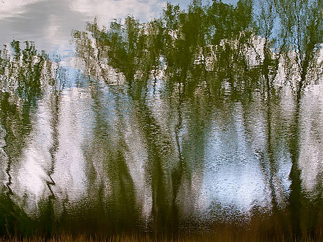 Reflection by Felix M Cobos