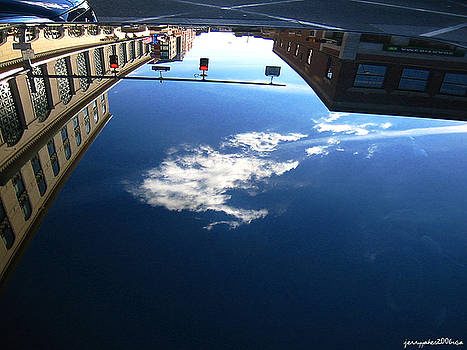 Reflection Glass Roof by Gerard Yates