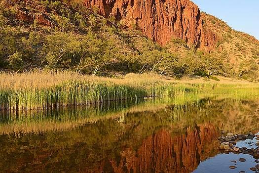 Reflection, Glen Helen Gorge by Vicki Vale