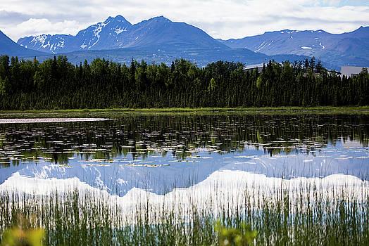 Gloria Anderson - Reflection lake