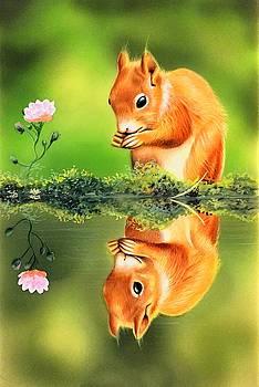 Reflection by Mahesh