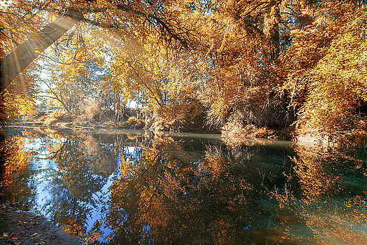 Reflection of Crabtree Creek in Fall Season by David Gn
