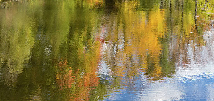 Reflection of fall #1, abstract by Peter Pauer