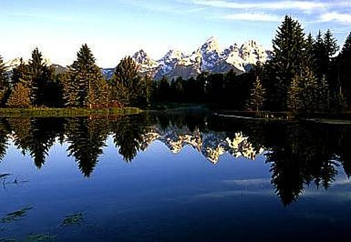 Reflection Of The Tetons by Floyd Bond