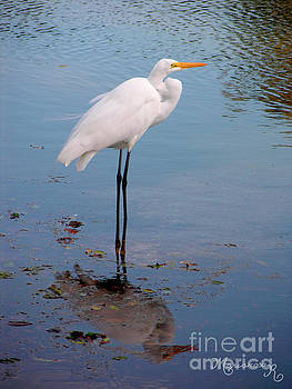Reflection On Stilts by Mariarosa Rockefeller