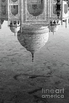 Neha Gupta - Reflection - Taj Mahal