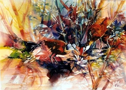 Reflections amounst the waterlilies by Estelle Hartley