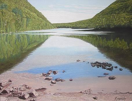 Reflections at Bubble Pond by Harvey Rogosin