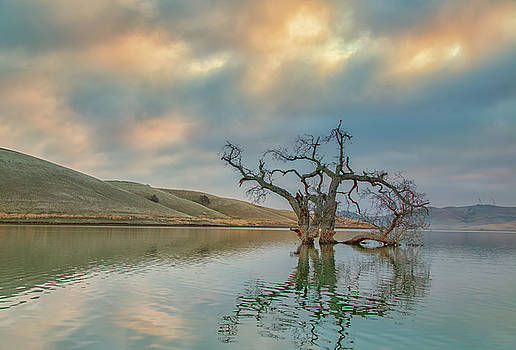 Reflections at Sunrise by Marc Crumpler